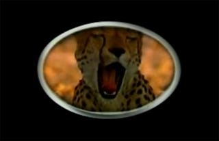 Illustration for article titled Yawning Cheetah Unseats Japan as Number Two Automobile Market