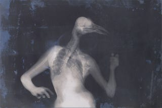 Illustration for article titled Hybrid X-ray images of bird people and octopus women