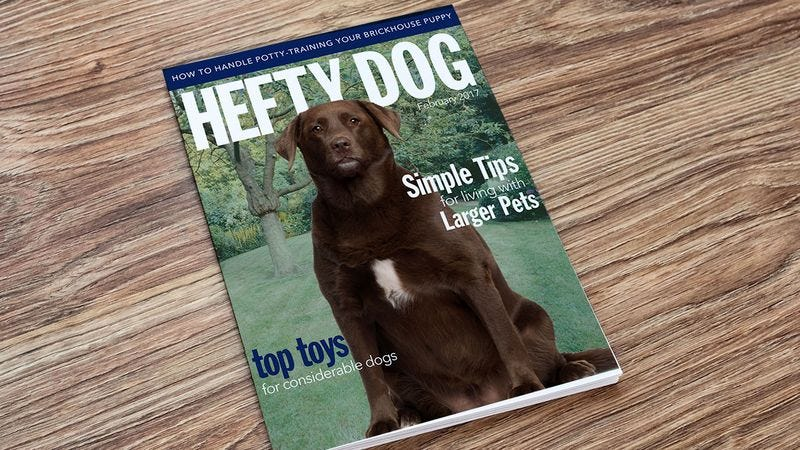 Illustration for article titled As The Editor Of 'Hefty Dog' Magazine, I Swear To Bring You Only The Most Accurate Information About Overweight Dogs In This Age Of Misinformation