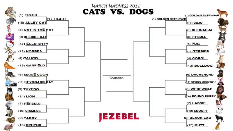 Illustration for article titled Cats vs. Dogs Tournament: Today's Matchup Is A Doozy