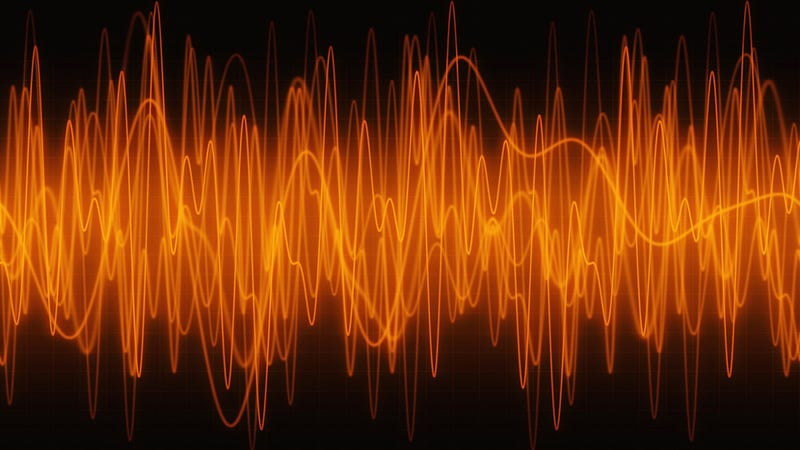 Illustration for article titled Which animal can hear the highest-pitched sounds?