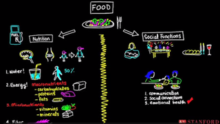 Illustration for article titled Learn How to Cook Healthy Family Meals with This Free Stanford Course