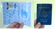 Illustration for article titled Make your own passport proxy