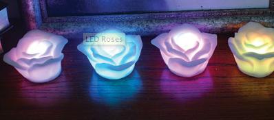 Illustration for article titled LED Roses Never Wilt