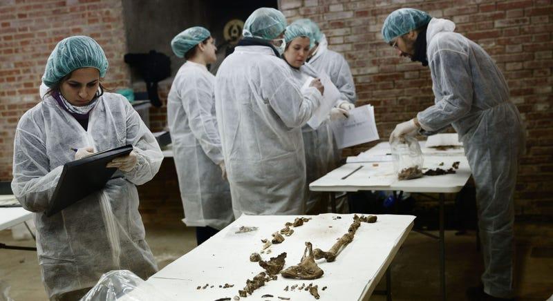Illustration for article titled Investigadores creen haber hallado restos óseos de Miguel de Cervantes