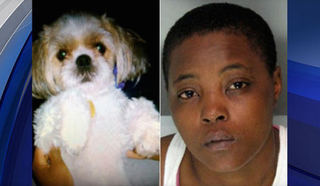 Haniyyah Barnes was sentenced to four years in prison after being convicted of throwing her neighbor's dog into oncoming traffic during an argument.Twitter