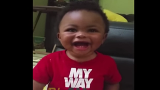 "Baby laughing hysterically at the word ""donkey""YouTube screenshot"