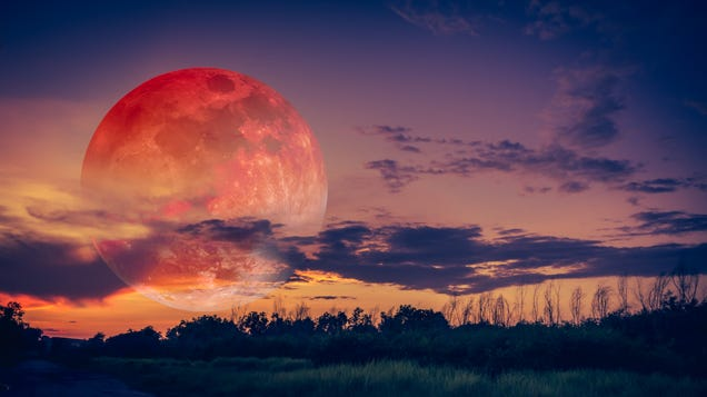 When to See This Month s  Pink Super Moon  at Peak Brilliance