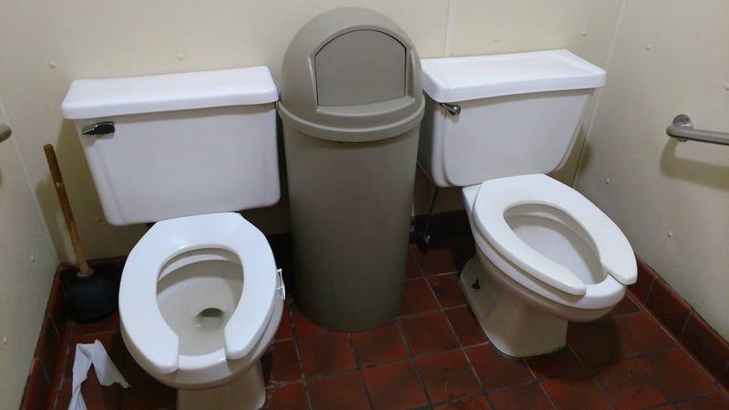 """Illustration for article titled Por qué muchos baños públicos tienen inodoros con forma de """"U"""""""