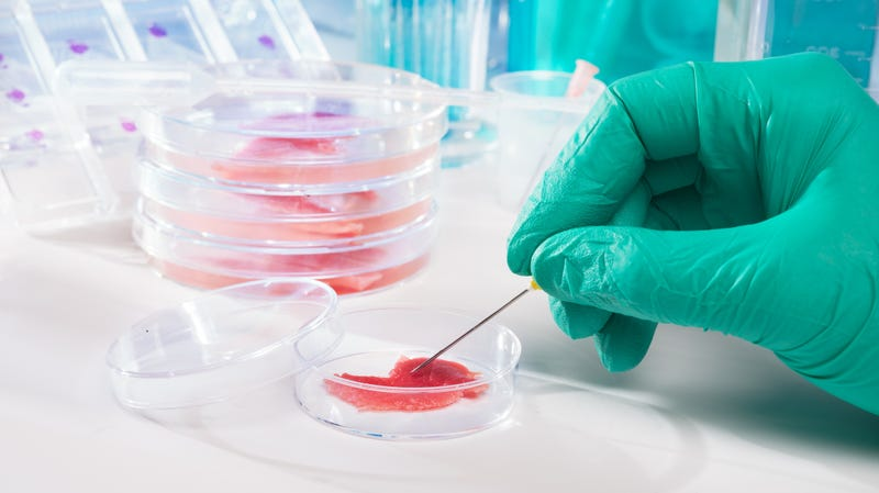 """Illustration for article titled Lab-grown meat prefers to be referred to as""""cell-based,"""" thank you"""
