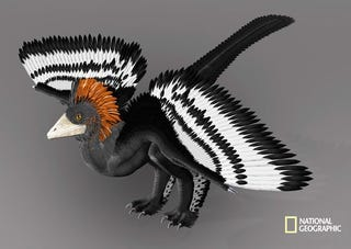 Illustration for article titled The Real Colors of a Dinosaur Revealed for the First Time