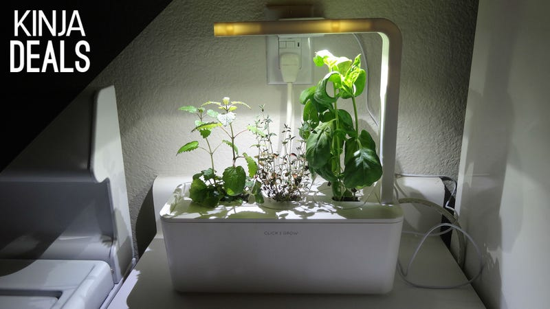 Illustration for article titled This Maintenance-Free Indoor Farm is 40% Off Today