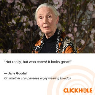 Illustration for article titled Jane Goodall Said What?!