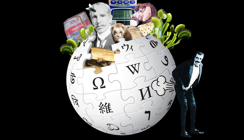 The Best Unusual Articles on Wikipedia