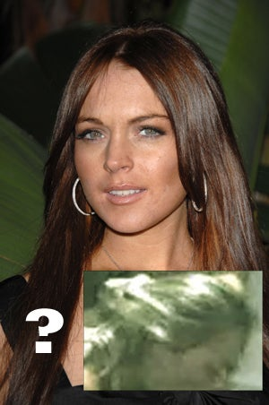 Illustration for article titled Lindsay Lohan: Latest Sex Tape Star?