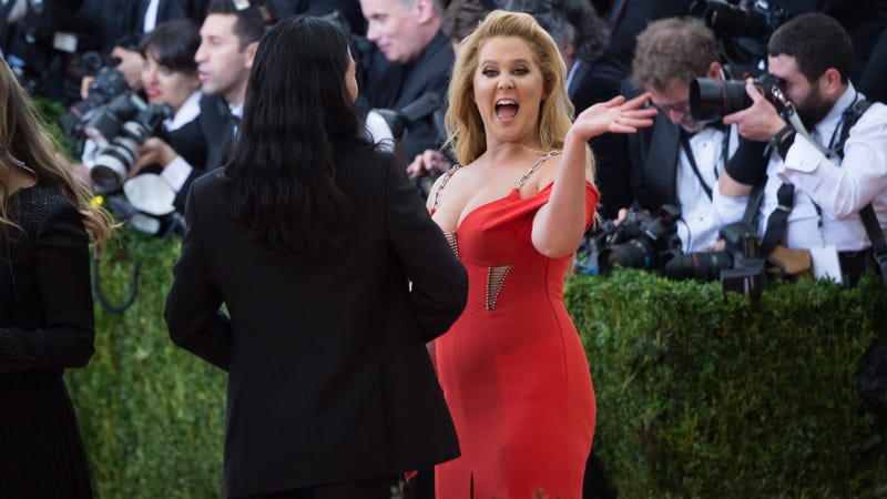 Illustration for article titled Amy Schumer Will Play an Intrusive Woman in a Man Movie