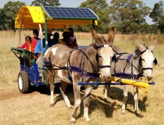 Illustration for article titled Donkey Powered Mobile Business Unit Comes Fully Loaded