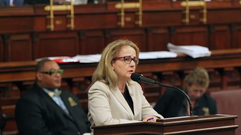 Rep. Madeleine Dean, D-Montgomery, addresses her colleagues, as they debate the budget on the floor of the House of Representatives at the Pennsylvania State Capitol in Harrisburg Tuesday June 30, 2015.