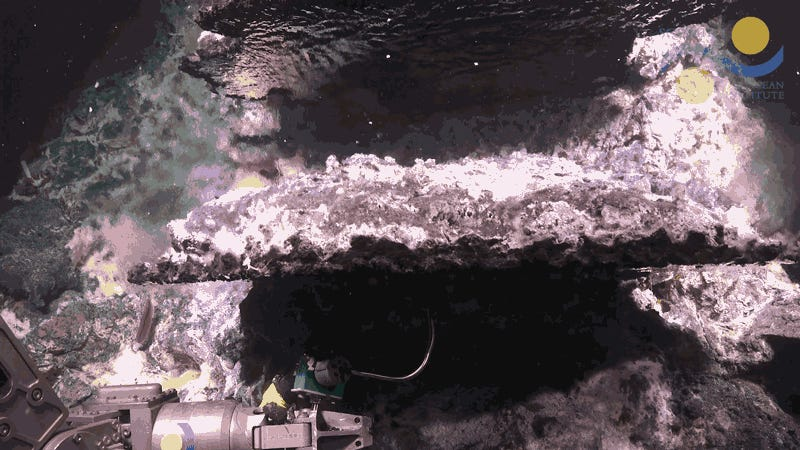 New Mirror-Like Pools Discovered Deep in the Pacific Ocean