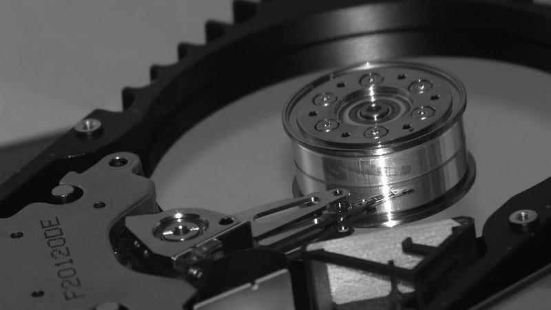 Los cinco mejores programas para recuperar fotos y documentos borrados