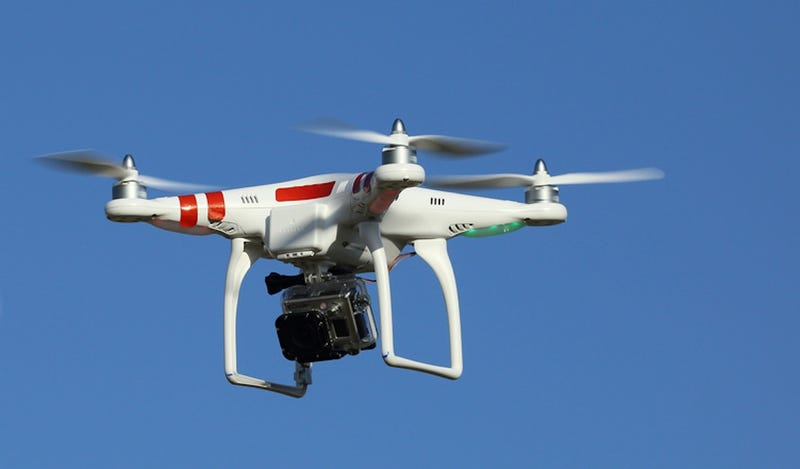 Illustration for article titled What should Gawker name its drone?