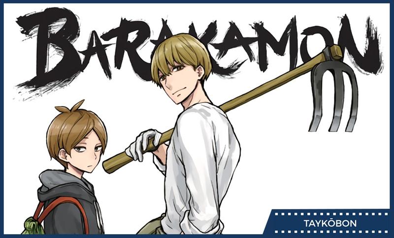 Illustration for article titled Barakamon Vol. 10 & 11 - Manga Review