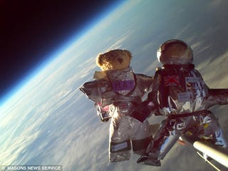 Illustration for article titled First Teddie Bear Astronauts Conquer Space