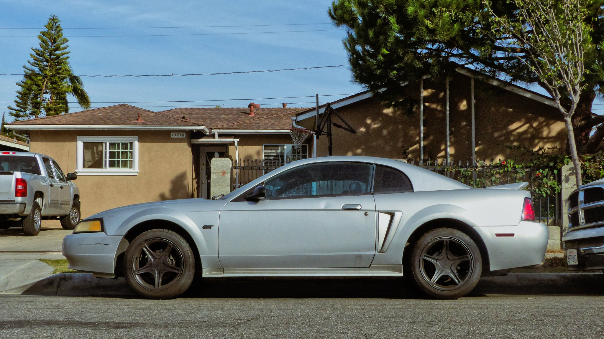 Tale Domestic Edge Mustang new Of 2000 Bunny Ford The Gt