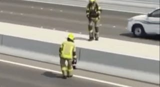 Heroes Close Four Lane Highway To Rescue An Adorable Little Kitten
