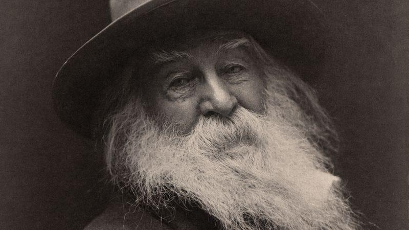 Whitman in 1887. (Photo: George C. Cox / Wikimedia Commons)