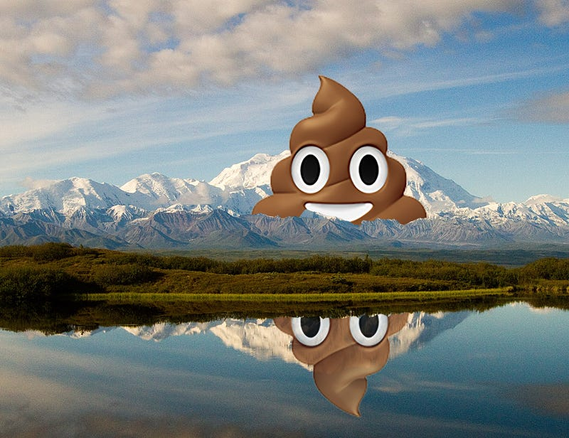 Illustration for article titled Climbers Are Taking Too Many Dumps On Denali
