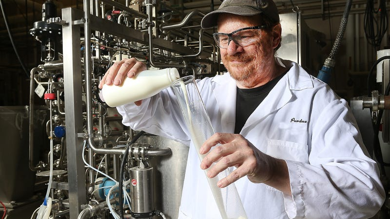 Purdue's Bruce Applegate at work in his lab. The new treatment dramatically extends the shelf life of milk. (Image: Purdue Agriculture Communication photo/Tom Campbell)