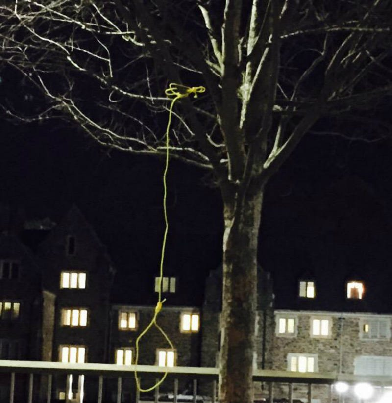 Illustration for article titled Noose Found Hanging from Tree on Duke University Campus