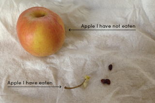Illustration for article titled How do you eat apples?