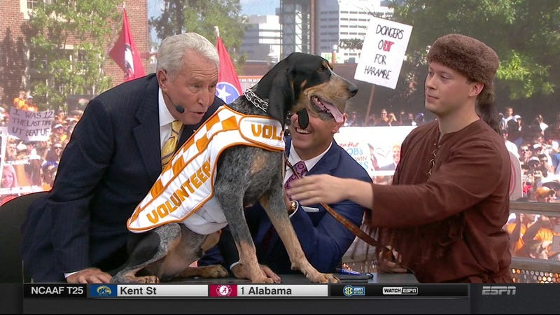 Illustration for article titled Tebow Jokes: Your Knoxville College GameDay Sign Roundup