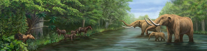 Illustration for article titled This Lovely Mural Offers a Slice of Pleistocene Life