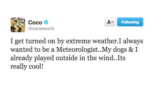 Illustration for article titled Coco Is Turned On by Extreme Weather