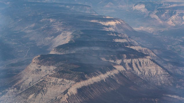 Smoke Exposure or Covid-19? Colorado Governor Says Wildfires Could Mask the Spread of the Virus