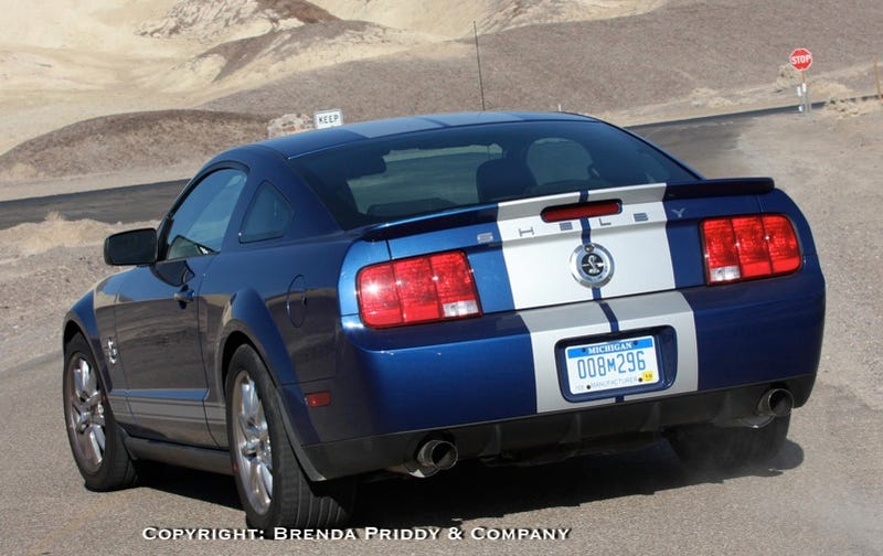 Illustration for article titled Shelby GT500KR Road Trip, Chapter IV: Death Valley Car Spy Photographers Are NOT Fooled By Manufacturer Plates