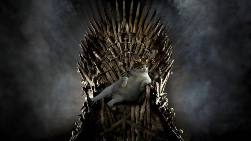 Illustration for article titled Ser Pounce wins Game Of Thrones, as shown in this photoshopped picture
