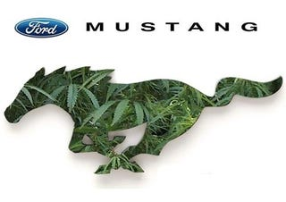 Illustration for article titled Will Trade 5.0 Mustang For 2 lbs Of Weed
