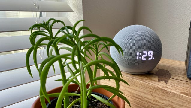 Alexa Can Share Songs You re Listening to With Friends