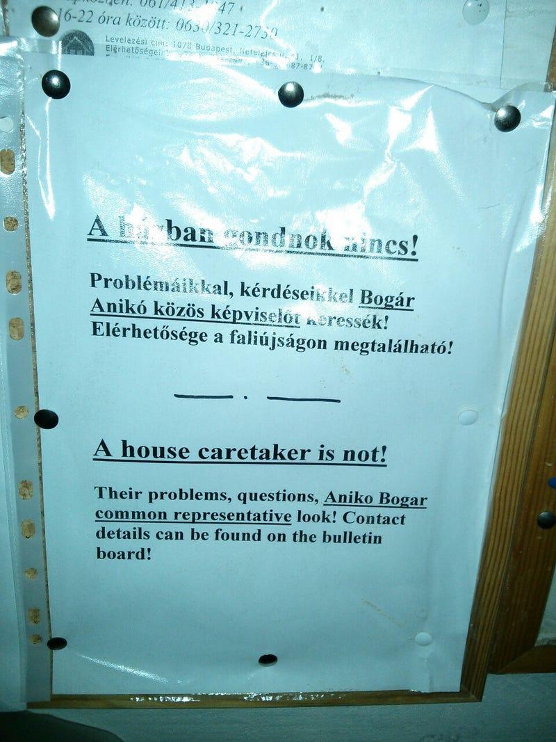 Illustration for article titled A house caretaker is not! - A fordítógép legszebb napjai