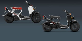 Illustration for article titled Any Honda Ruckus Owners Out There?