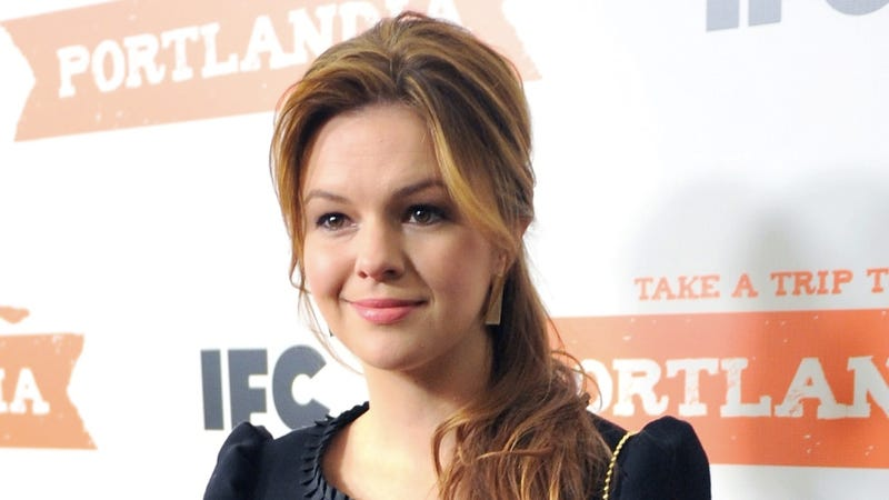 amber tamblyn house