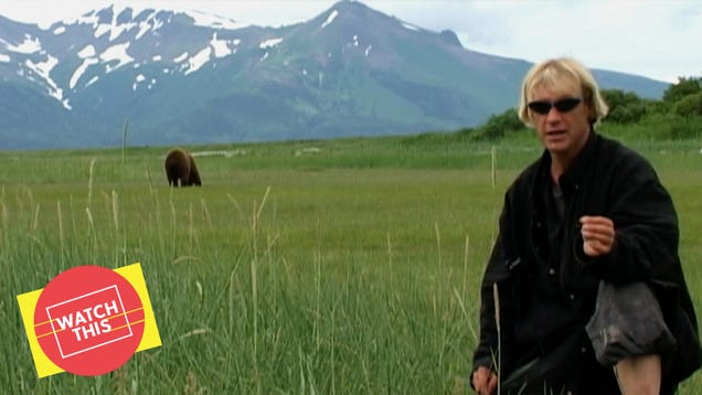 Werner Herzog's Grizzly Man is a nature doc about the strangeness of humans