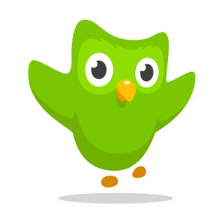 Illustration for article titled Duolingo Leaderboard: Week 1 + January Scores!