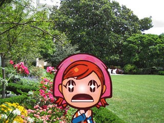 Illustration for article titled First Cooking Mama, Now Gardening Mama