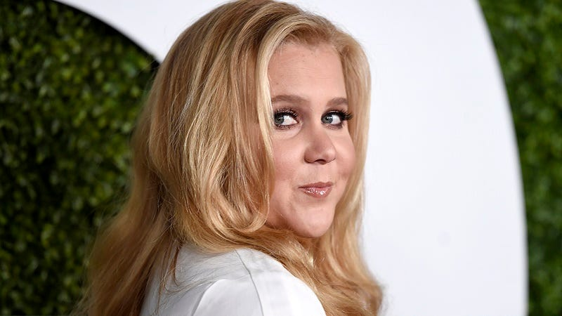 Illustration for article titled Amy Schumer Says Critic Who Called Her Ugly Tried to Date Her