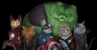 Illustration for article titled In Which I Post Cat-Related Nerdery